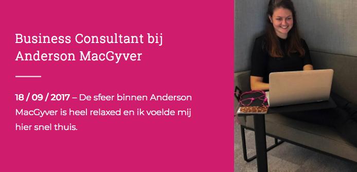 Wat doe je als adviseur bij Anderson MacGyver